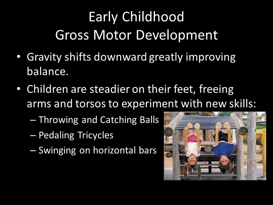 Early childhood motor development ppt video online download for Motor skills development in early childhood