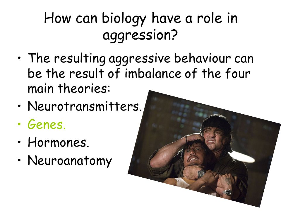 biological basis of aggression Quizlet provides biological basis of behavior activities, flashcards and games start learning today for free.