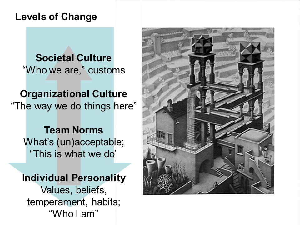 levels of organizational culture pdf
