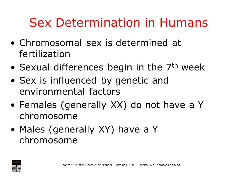 chromosomal-sex-determination