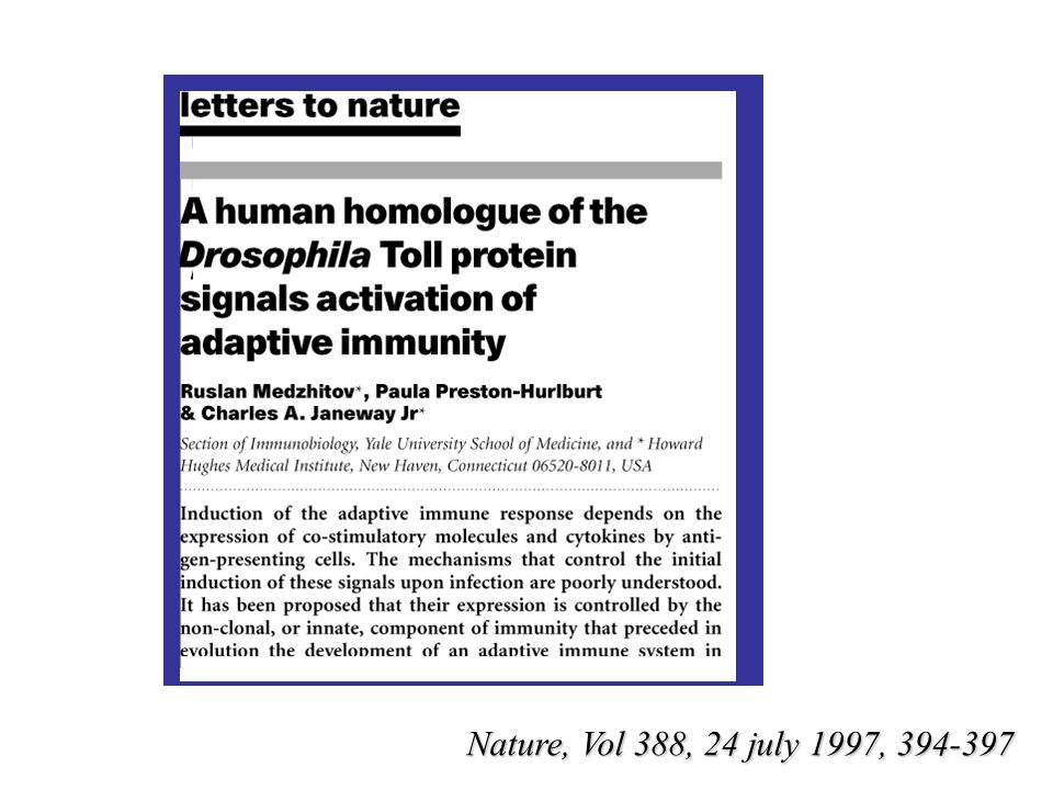 Nature, Vol 388, 24 july 1997, 394-397