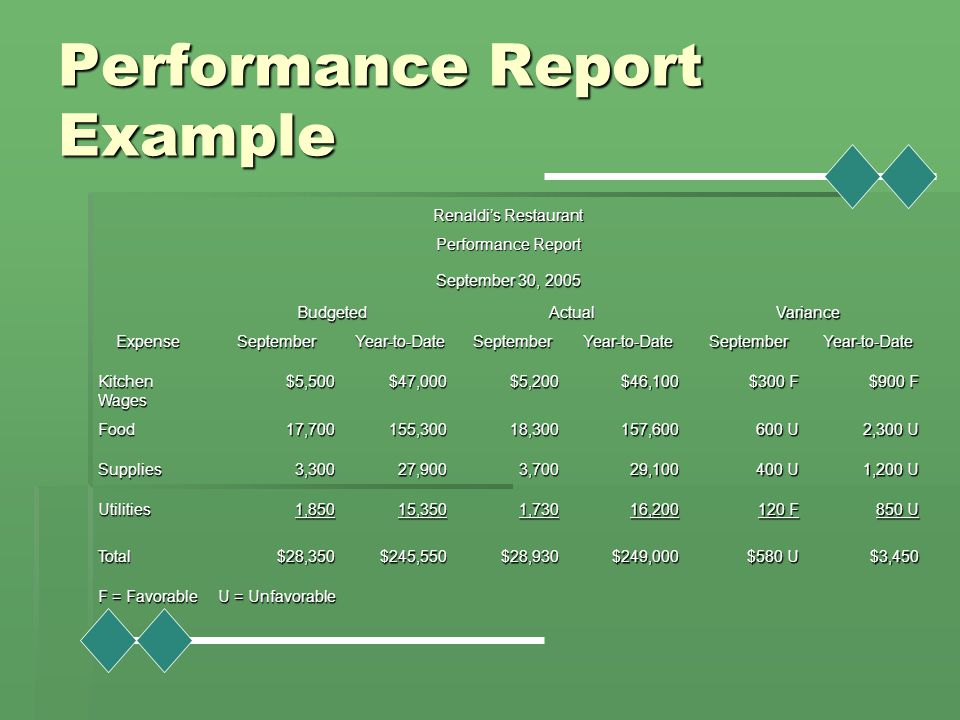 Performance Report Example