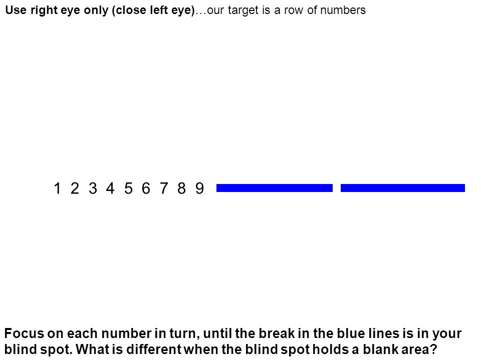 Use right eye only (close left eye)…our target is a row of numbers