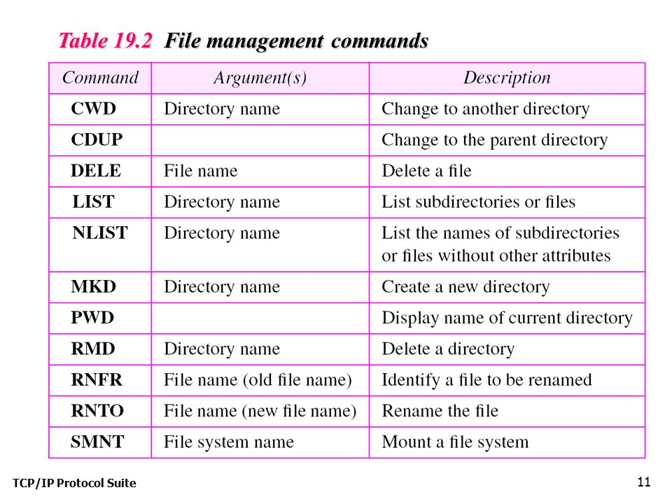 Table 19.2 File management commands