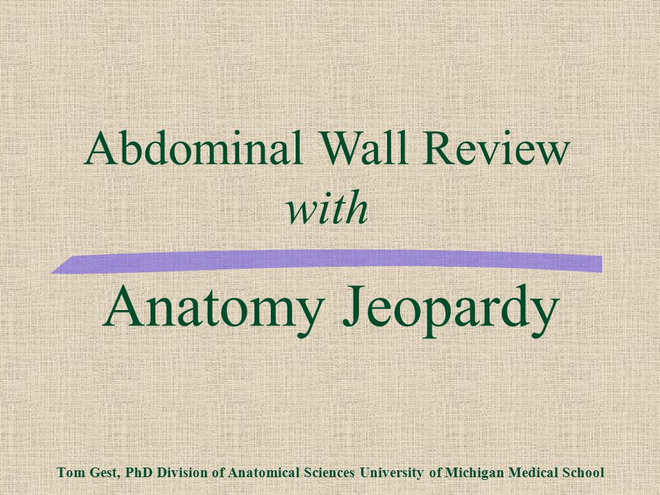 Abdominal Wall Review with