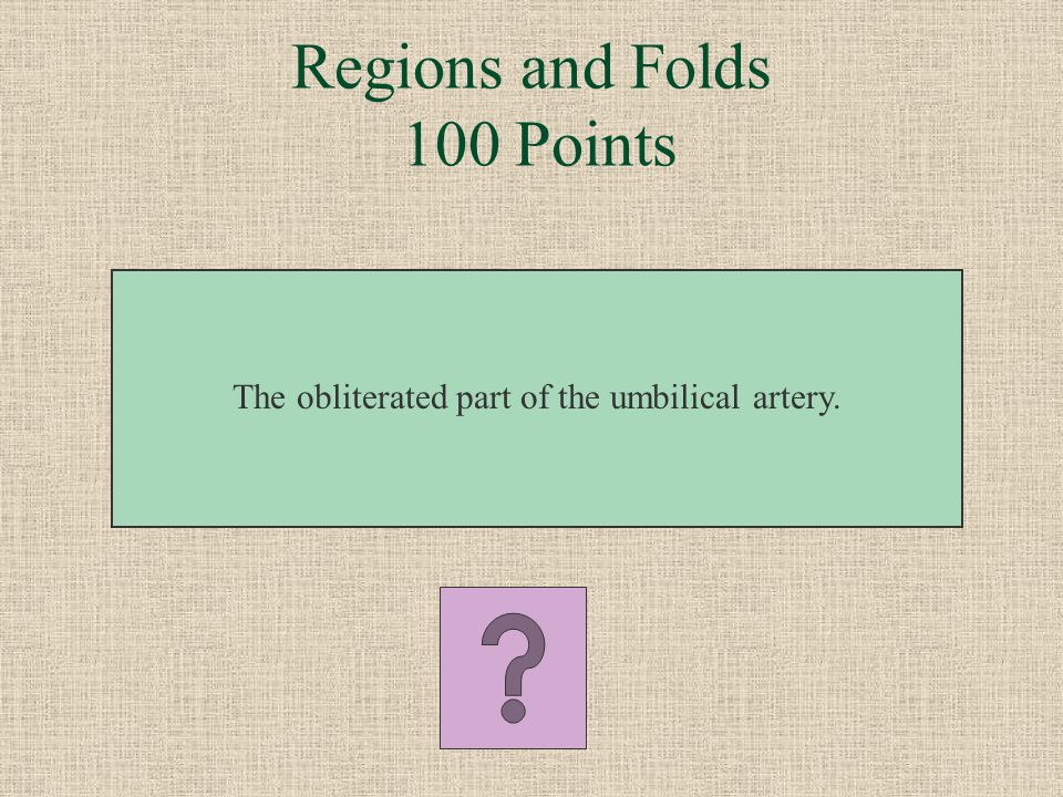 Regions and Folds 100 Points