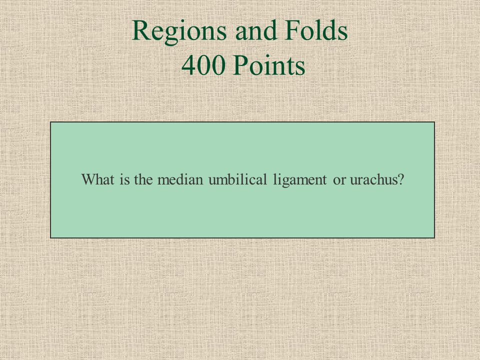 Regions and Folds 400 Points