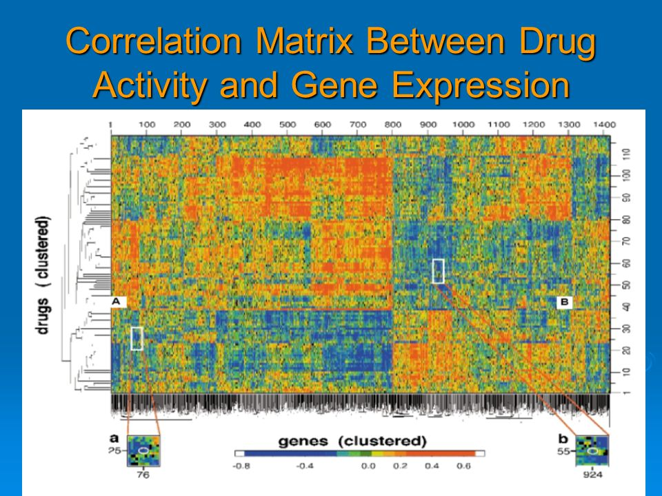 Correlation Matrix Between Drug Activity and Gene Expression