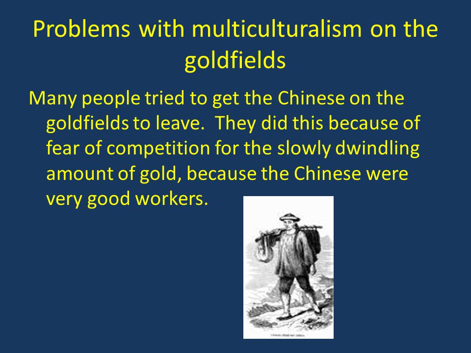 Problems with multiculturalism on the goldfields
