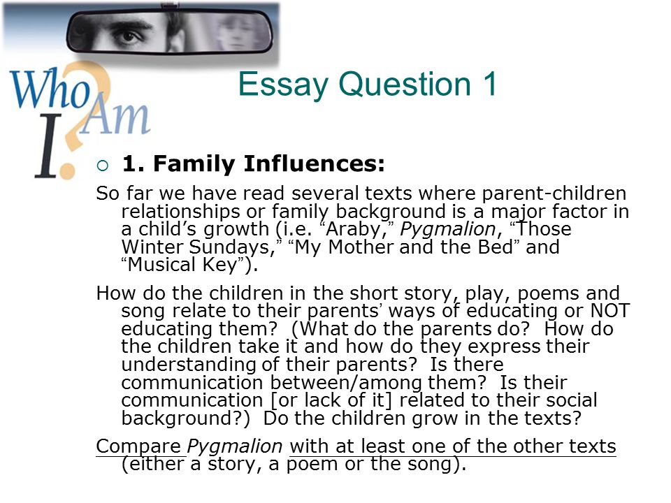 Family business essay