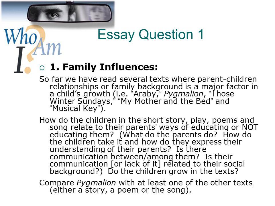 Family essay topics