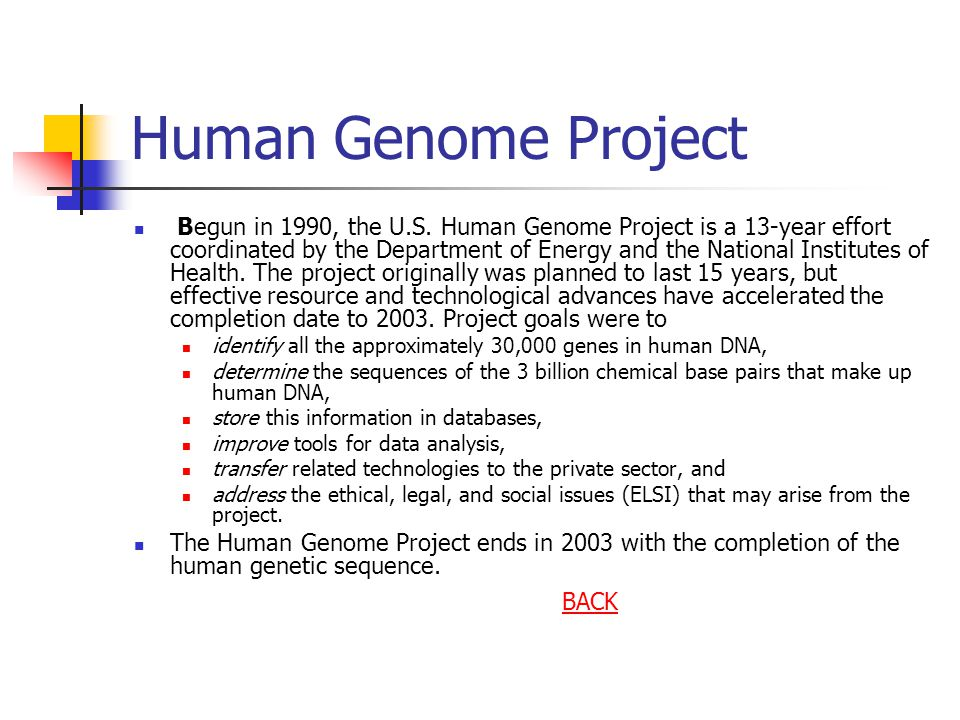 an analysis of the human genome project as a scientific effort Researchers conducted early biological research on whole animals to  these  instruments later were used to analyze chromosomes as well as whole cells   1988 —better organized the effort to map and sequence the human genome   the lab's program became part of the international human genome project in  1990.