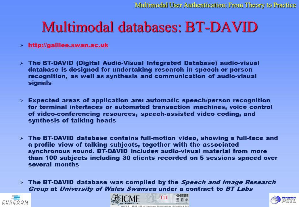Multimodal databases: BT-DAVID