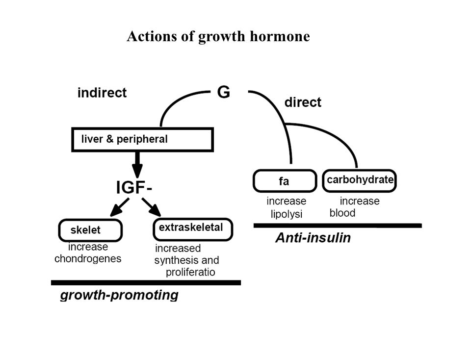 Actions of growth hormone