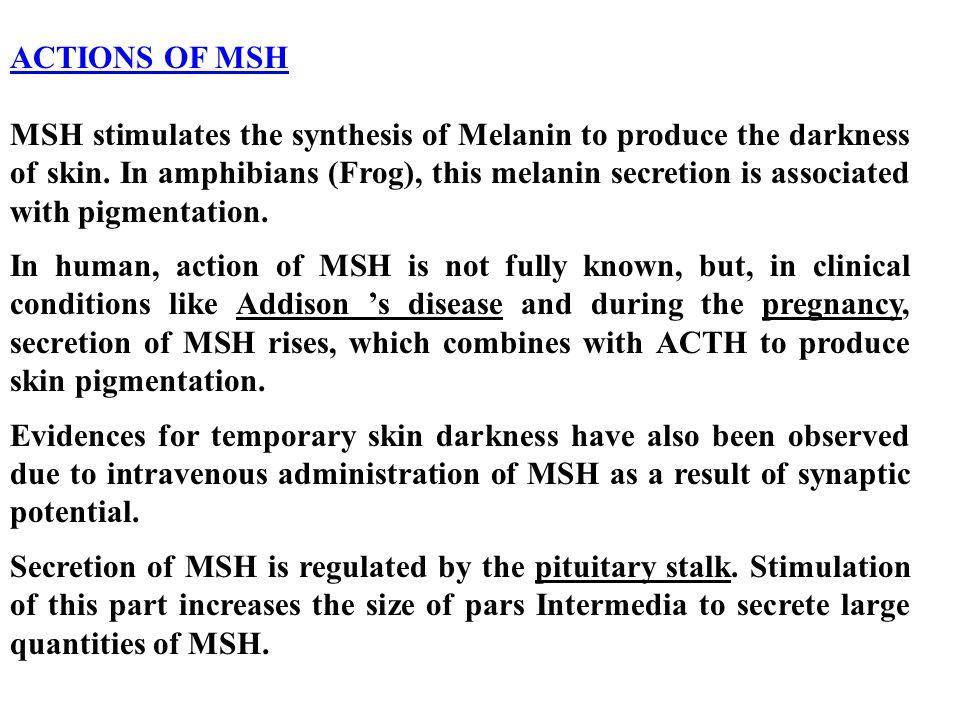 ACTIONS OF MSH