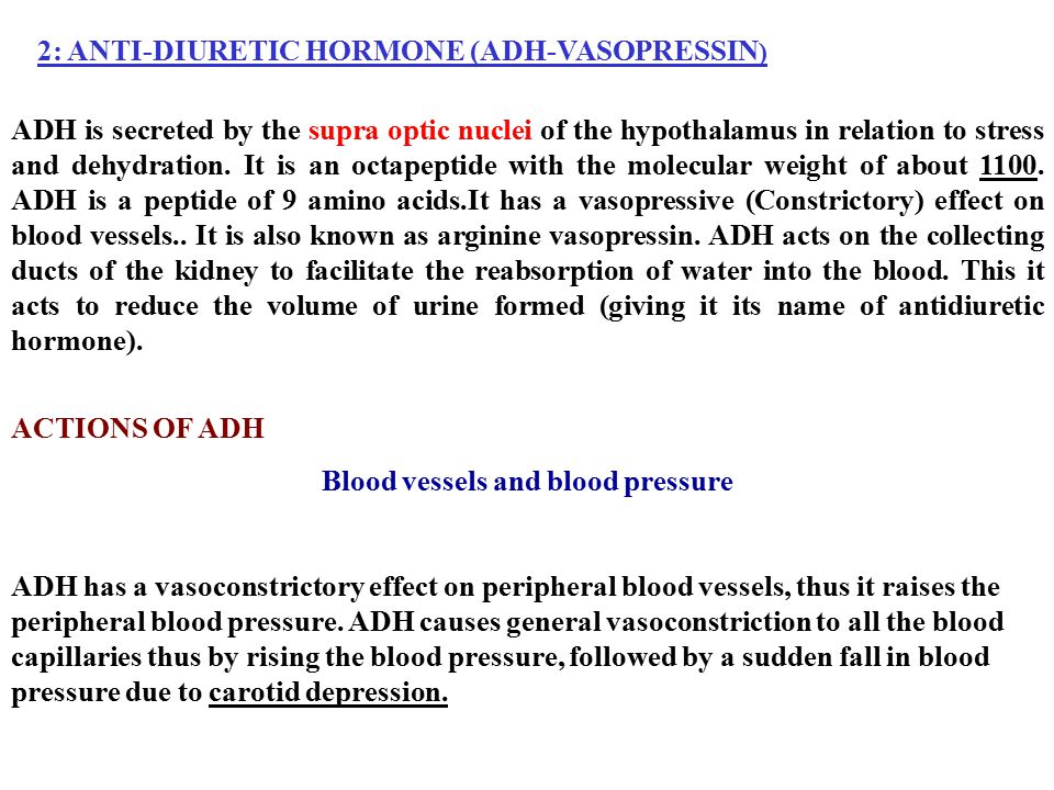 Blood vessels and blood pressure