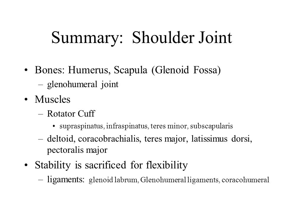 overview of the shoulder joint Shoulder pain is a common complaint in family practice patients the unique anatomy and range of motion of the glenohumeral joint can present a diagnostic challenge, but a proper clinical evaluation usually discloses the cause of the pain.