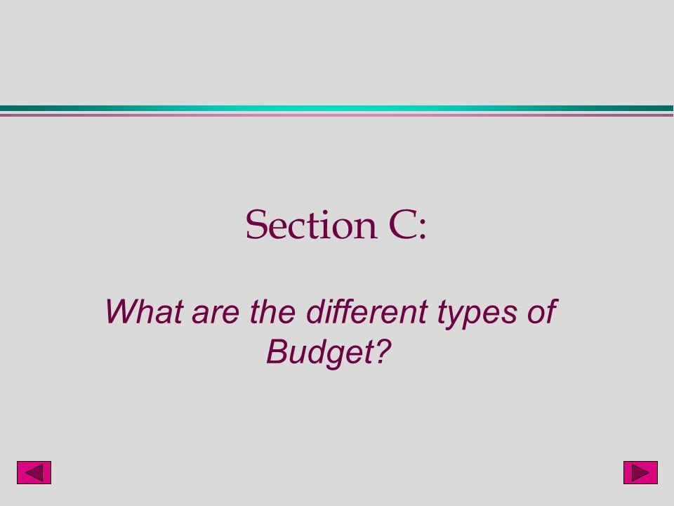 the different types of budgeting systems The same goes for budgeting – there's no one-size-fits-all so let's learn about  the different types of budgets and find out which budgeting.