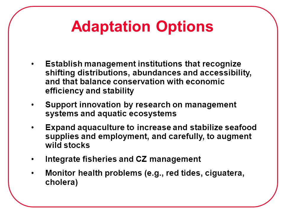 Adaptation Options