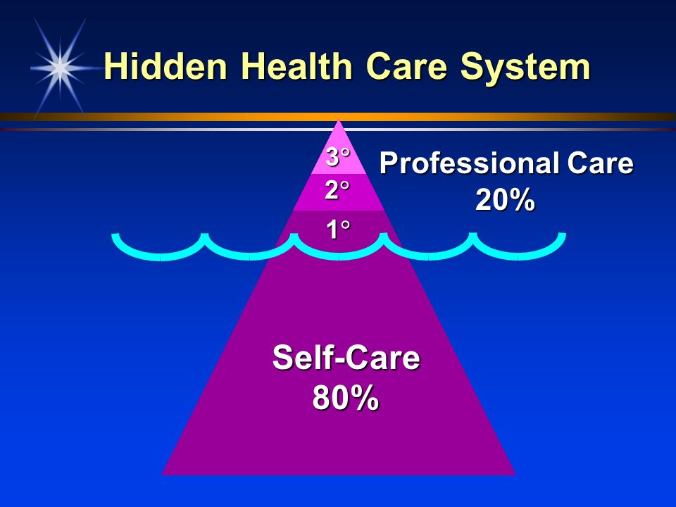 Hidden Health Care System