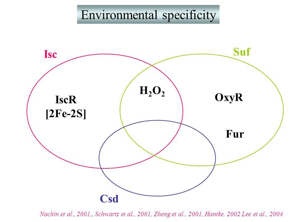 Environmental specificity