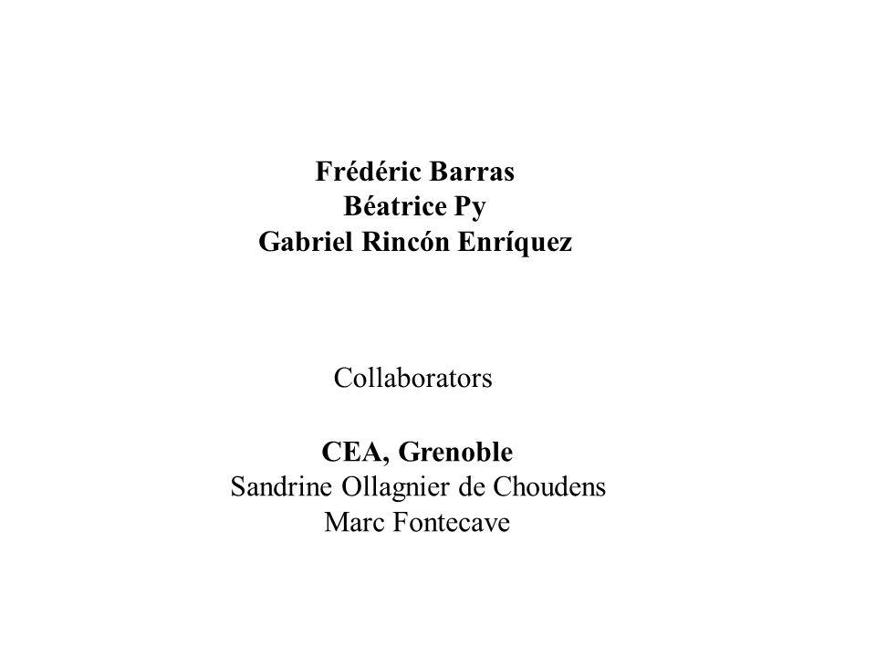 Gabriel Rincón Enríquez