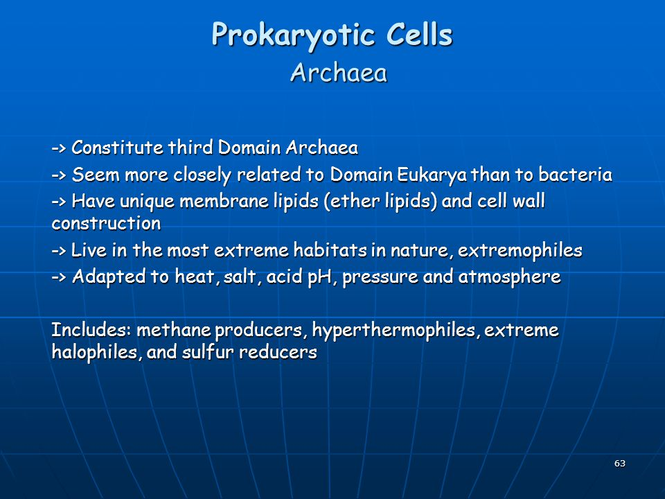 the adaptation of archaea to acidity These differences may be an adaptation by some archaea for life in  in acidity  or alkalinity, high salt concentrations, and high pressure.