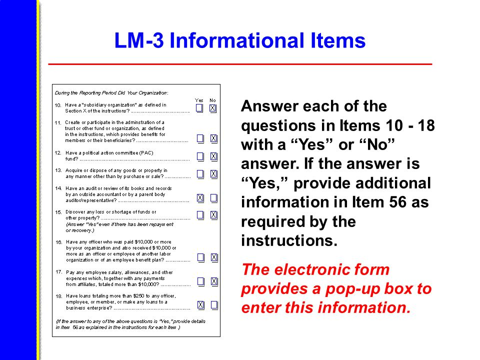 LM-3 Informational Items