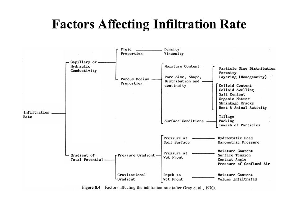 the factors affecting the rate of infiltration essay Despite lower rates of cuff healing, patients with fatty infiltration and  in  summary, multiple factors have been shown to influence rotator cuff.