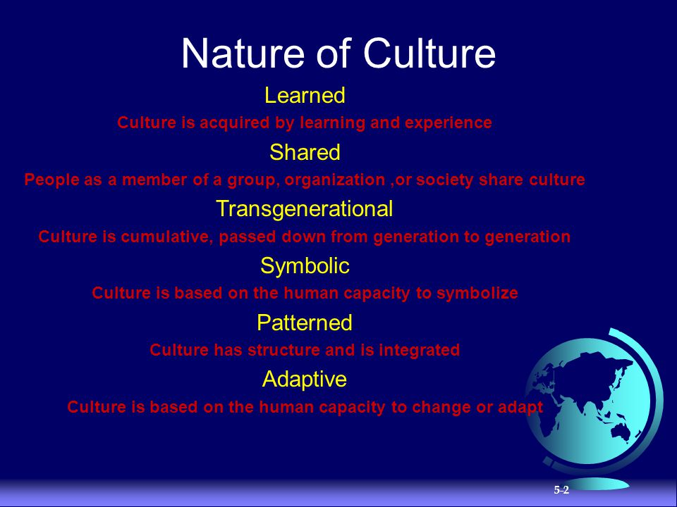 Nature of Culture Learned Shared Transgenerational Symbolic Patterned