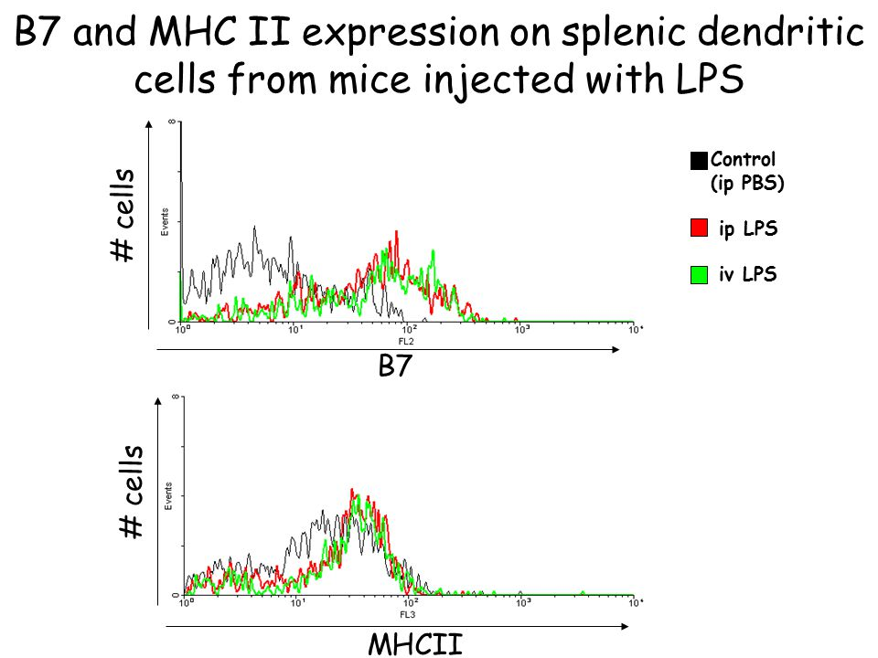 B7 and MHC II expression on splenic dendritic cells from mice injected with LPS