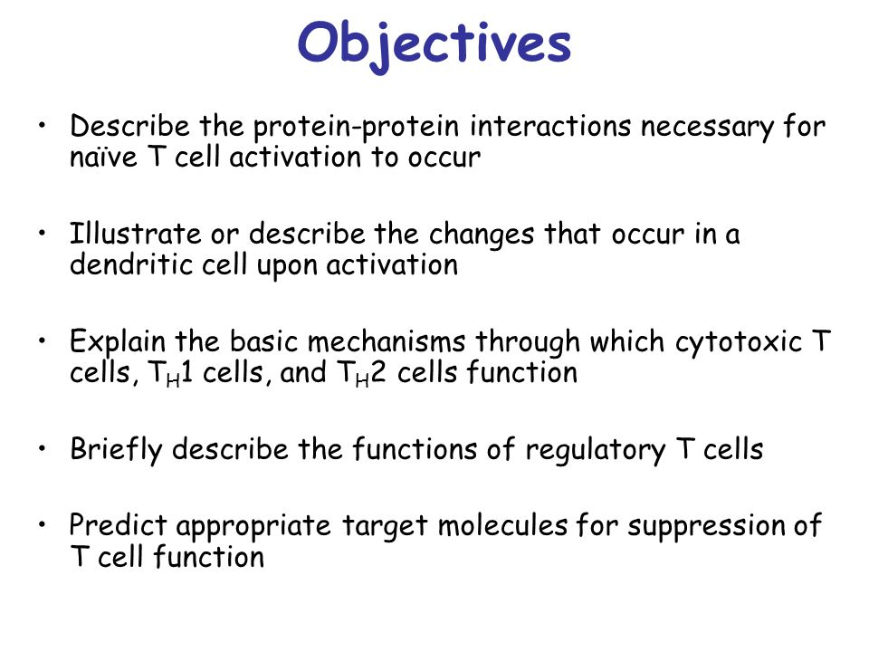Objectives Describe the protein-protein interactions necessary for naïve T cell activation to occur.