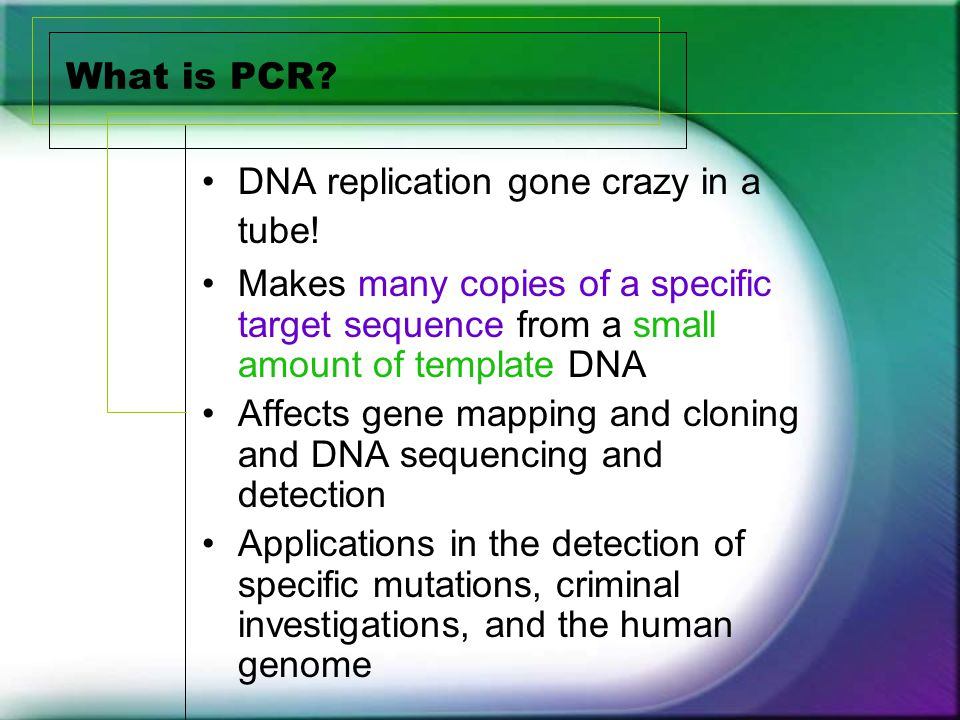 Alu insert pv92 locus chromosome ppt video online download for What is a template in dna