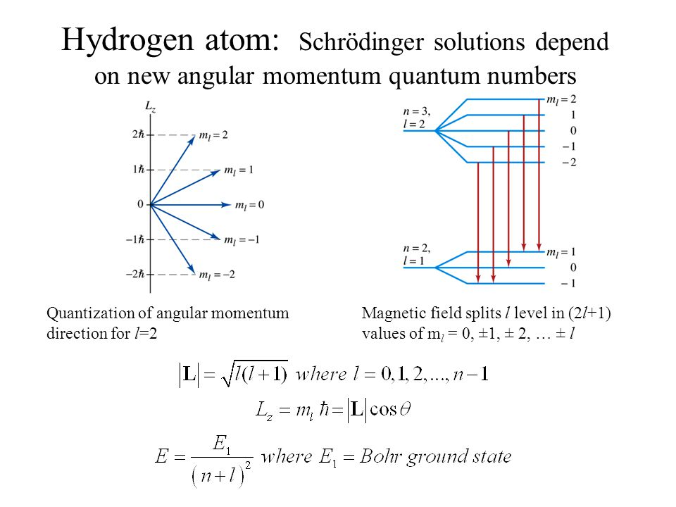 Hydrogen atom: Schrödinger solutions depend on new angular momentum quantum numbers