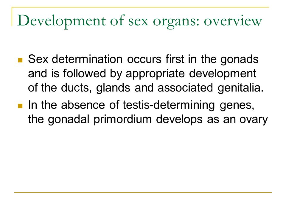 Development Of Sex Organs 79