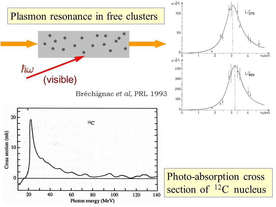 Plasmon resonance in free clusters