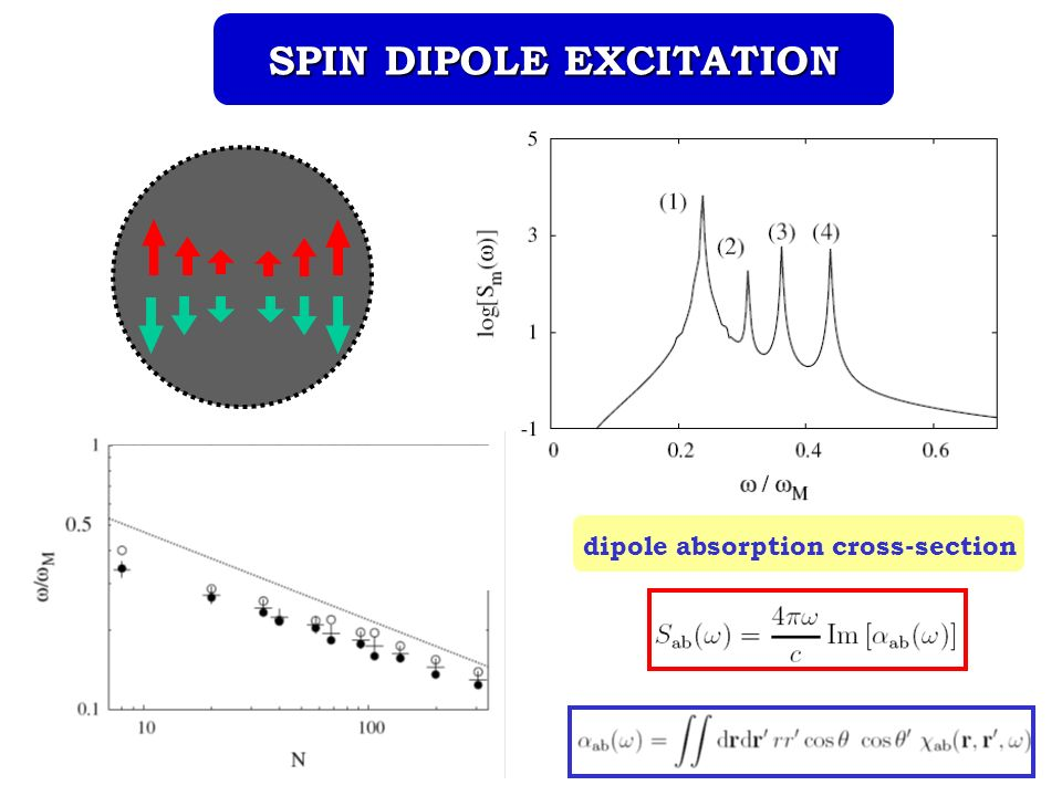 SPIN DIPOLE EXCITATION dipole absorption cross-section