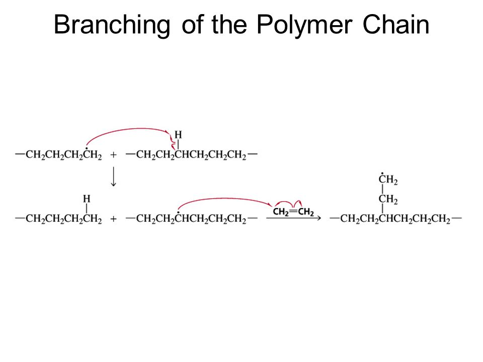Branching of the Polymer Chain