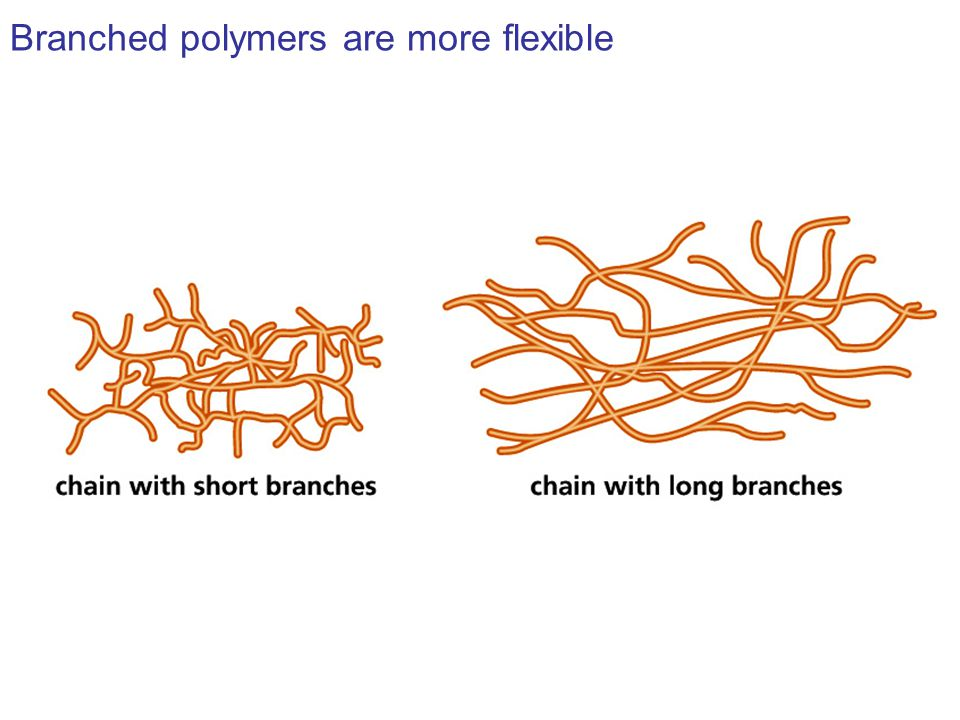 Branched polymers are more flexible