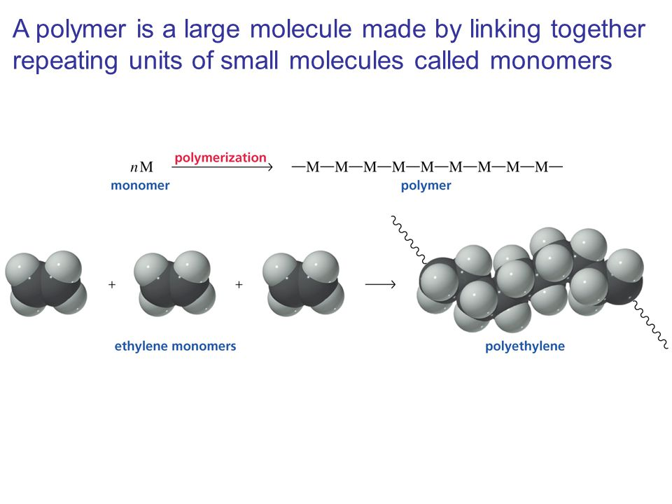 A polymer is a large molecule made by linking together