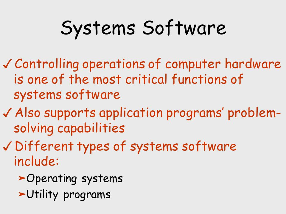 computer hardware and software elements