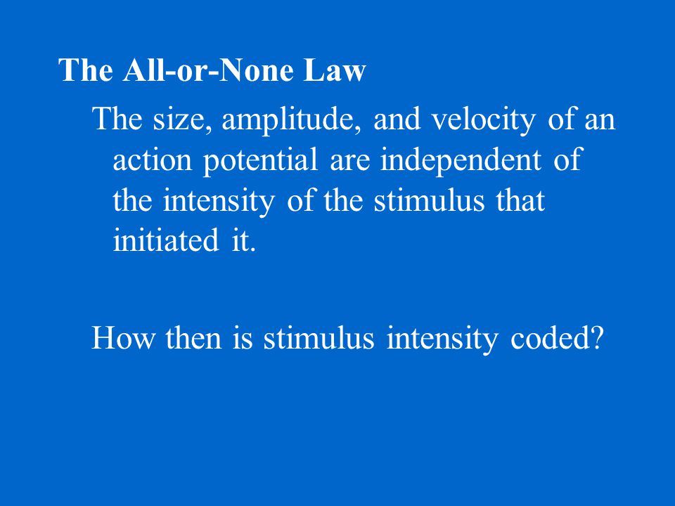 The All-or-None Law The size, amplitude, and velocity of an action potential are independent of the intensity of the stimulus that initiated it.