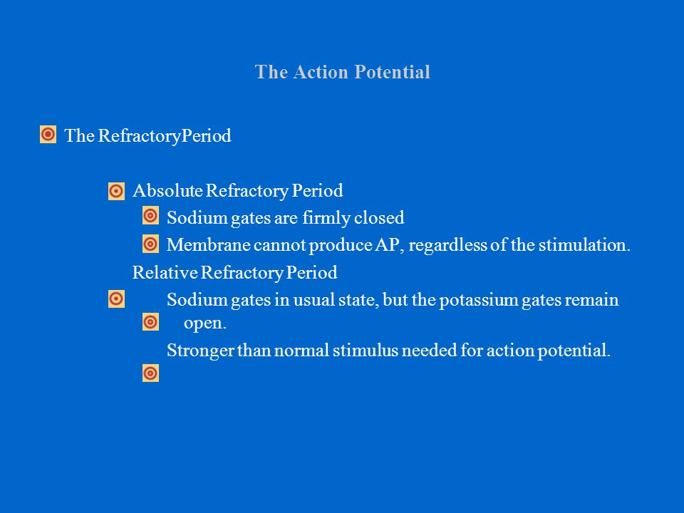 The Action Potential The RefractoryPeriod Absolute Refractory Period