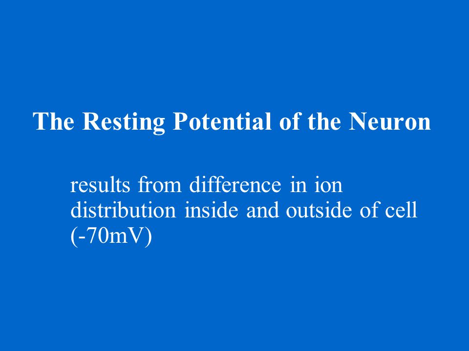 The Resting Potential of the Neuron