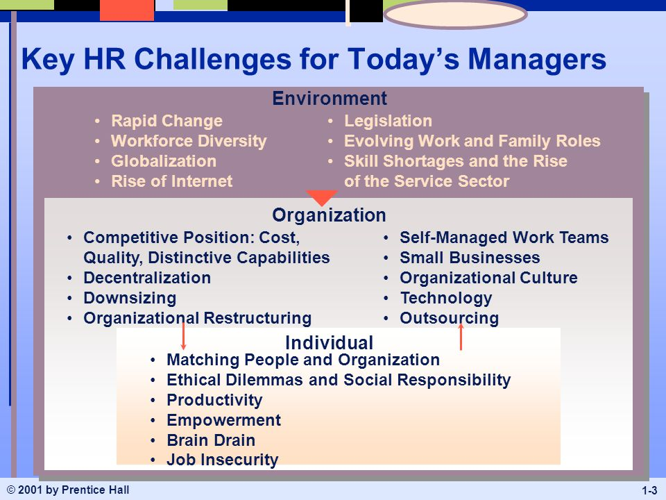 environmental challenges for hrm Advertisements: environment in human resource management: internal and external environment what is environment in simple words, environment comprises all those forces which have their bearing on the functioning of various activities including human resource activities.