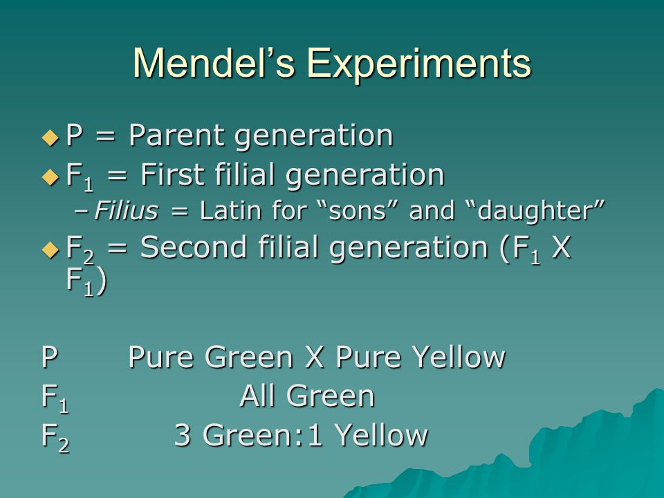 Mendel's Experiments P = Parent generation