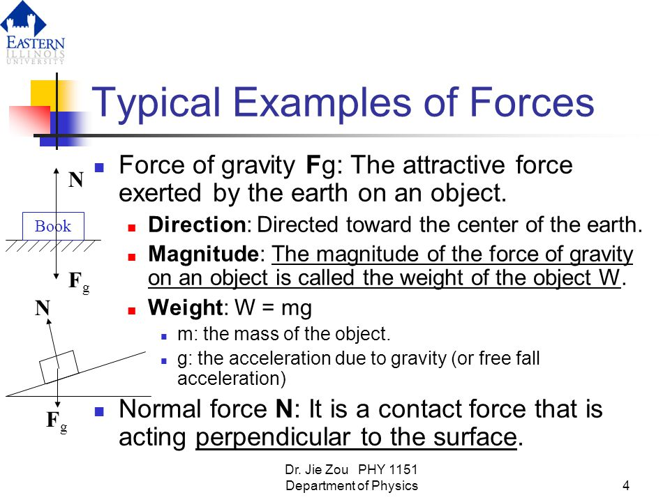 Typical Examples of Forces