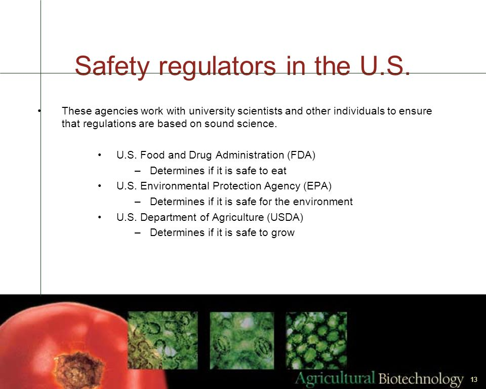 Safety regulators in the U.S.