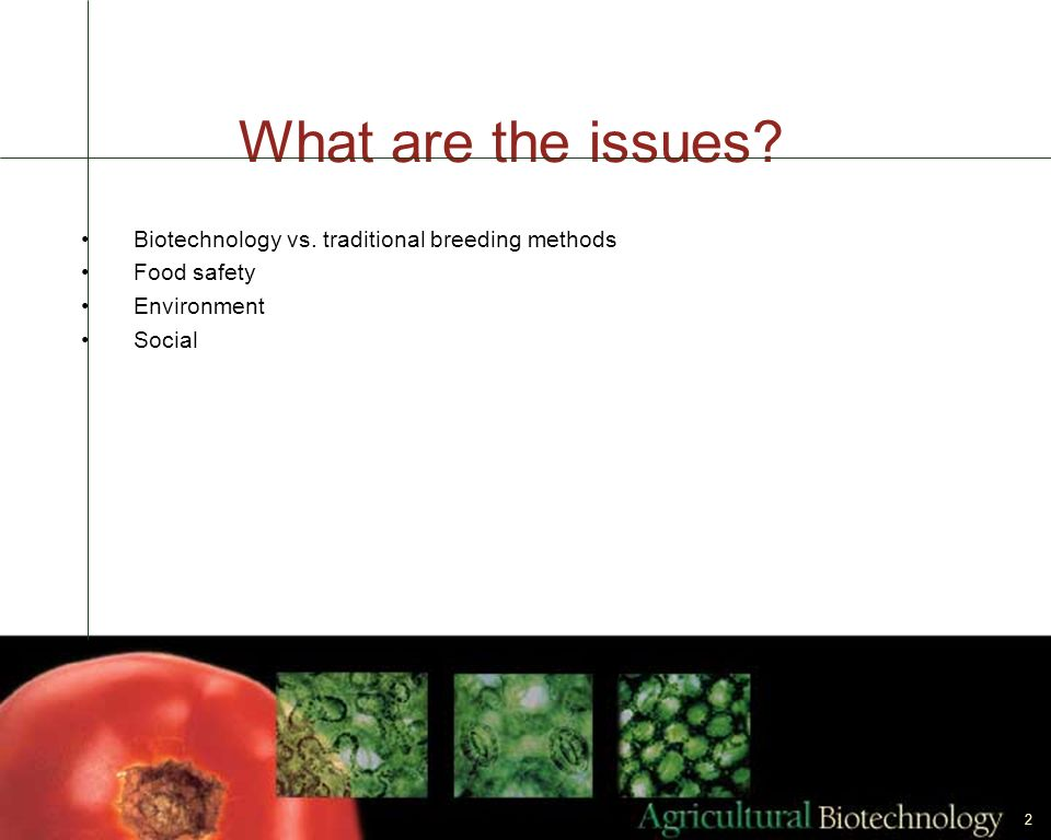 What are the issues Biotechnology vs. traditional breeding methods