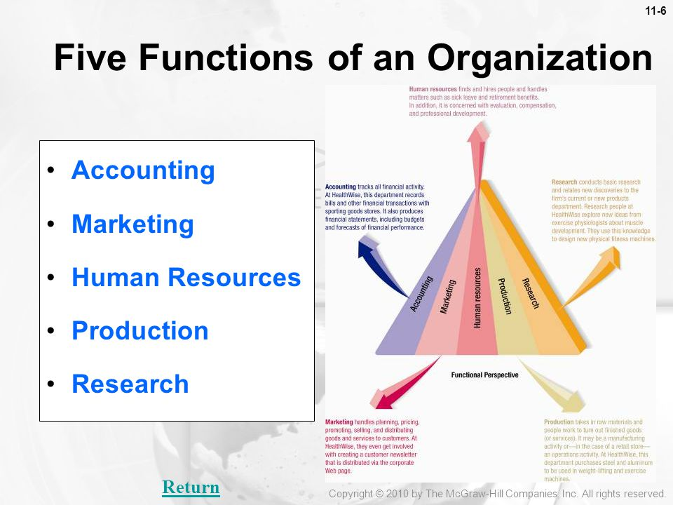 Five Functions of an Organization